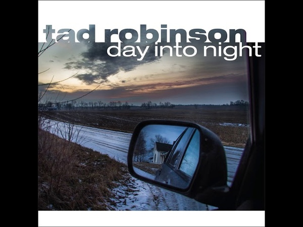 Tad Robinson While You Were Gone