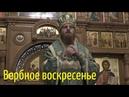 Со Христом мы не умрем. Проповедь. Владыка Амвросий. Вербное воскресенье.