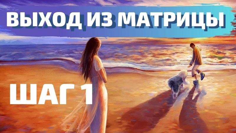 ВЫХОД ИЗ МАТРИЦЫ ШАГ 1 ВАДИМ ЖЕРЕБЦОВ