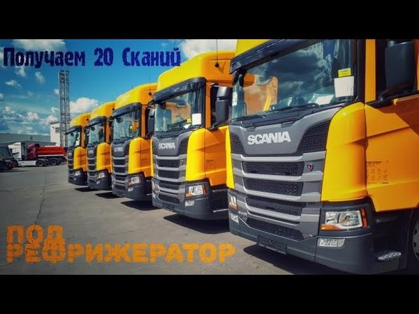 Получаем 20 автомобилей Scania R440 и 20 рефрижераторов Schmitz