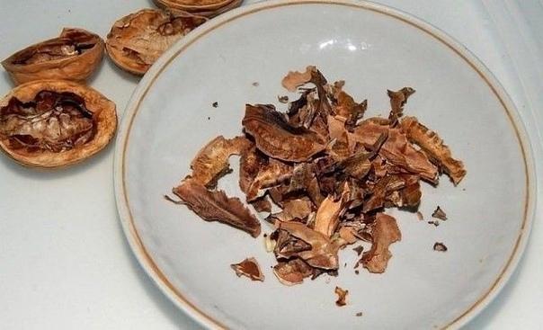 Перегородка внутри ореха - очень ценный продукт, который может избавить от многих болезней