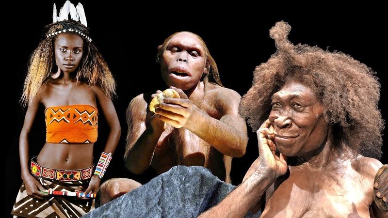 Сложная популяционная история и модели примеси в роду людей. Неандертальцы денисовцы эректусы и др