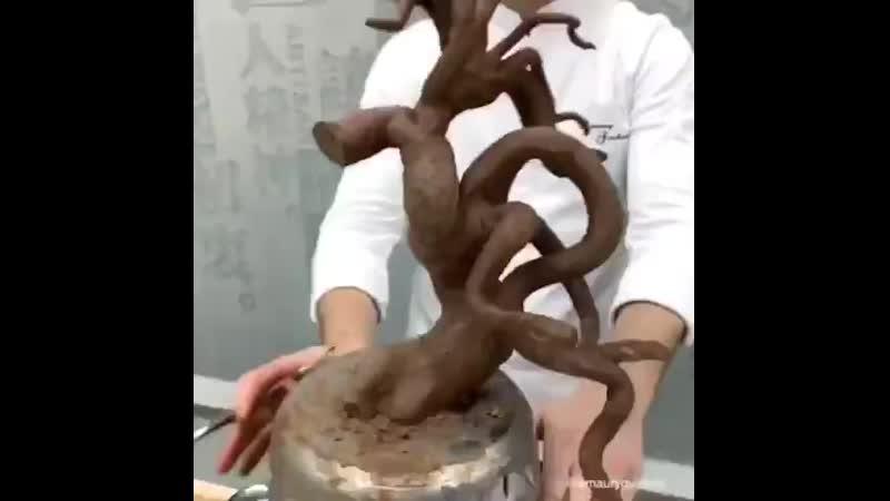 Съедобное денежное дерево c]tlj,yjt ltytyjt lthtdj
