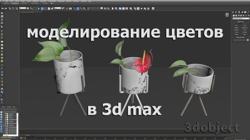 Антуриум. Моделирование цветов в 3d max.