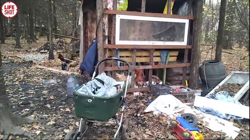 Мальчика нашли в хижине в лесу подмосковной Балашихи