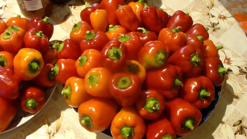 Жареные перцы в масле на зиму закрываем в банки Grilled peppers in oil for the winter