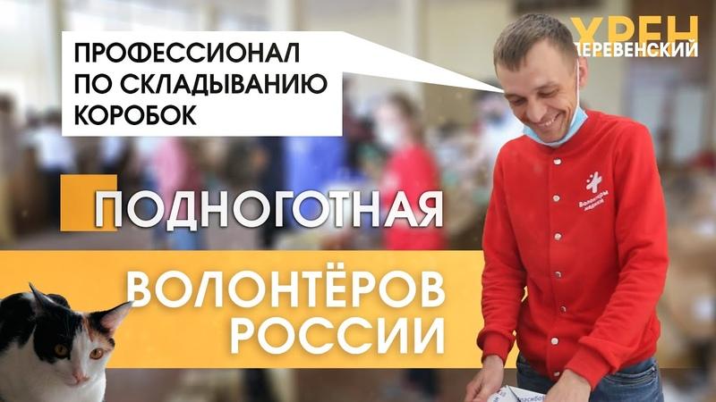 Волонтёры России Подноготная