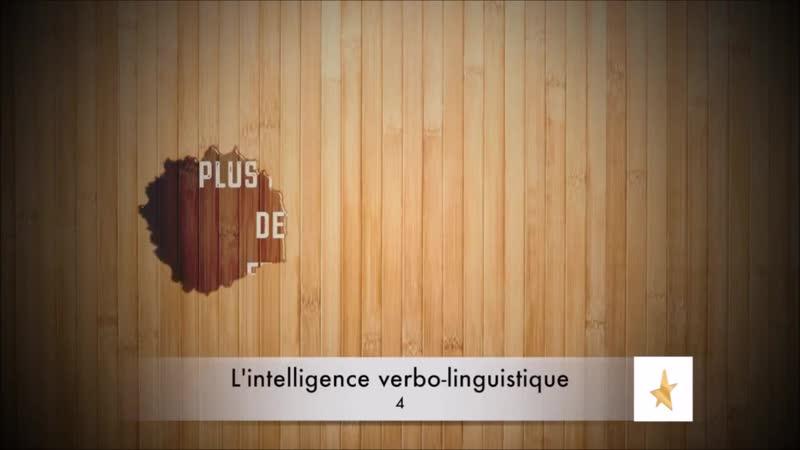 📋2 - Qu'est-ce que la Théorie des Intelligences Multiples ? {Howard Gardner} ✔22,5 🇫🇷
