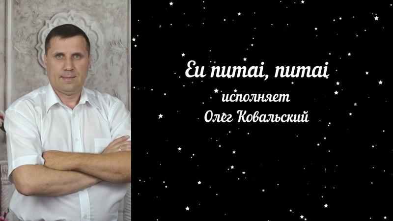 Eu numai numai Ionel Istrati исполняет Олег Ковальский cover