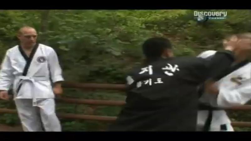 Корея Тайны боевых искусств Korea Fight Quest