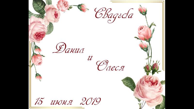 Свадьба Данил и Олеся 15 июня 2019