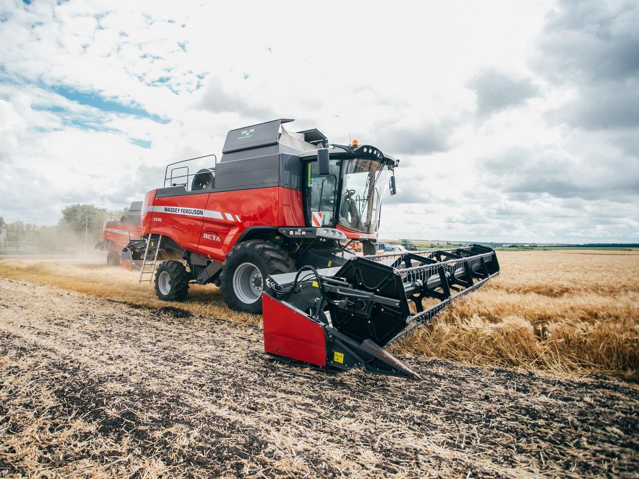 Курские аграрии намолотили более 3,5 млн тонн зерна