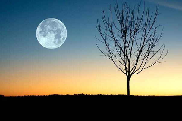 Лунный календарь на июль 2019г