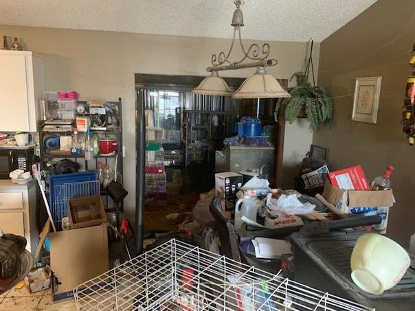 В вонючем загаженном доме вместе с 3 детьми жили 245 животных В полицию города Эджуотер, штат Флорида, обратился 57-летний Грег Нельсон. Он заявил, что решил разорвать отношения со своей женой,