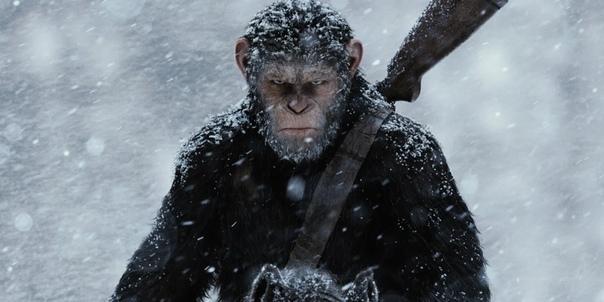 Новая «Планета обезьян» находится в хороших руках