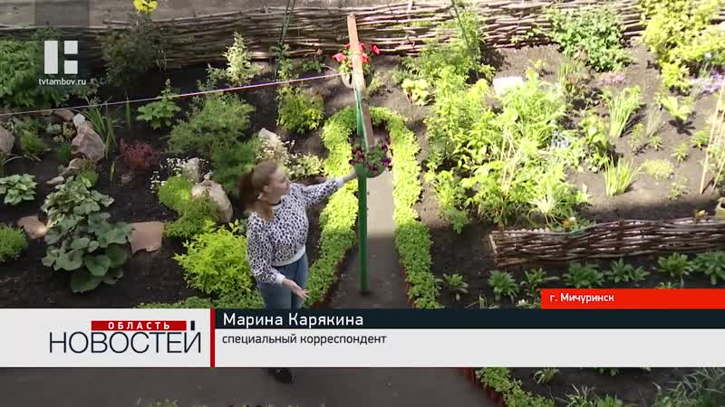 Жительница Мичуринска обустроила палисадник под окнами многоэтажки, 2020 г.