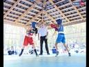 На базе отдыха Дружба стартовал открытый турнир по боксу