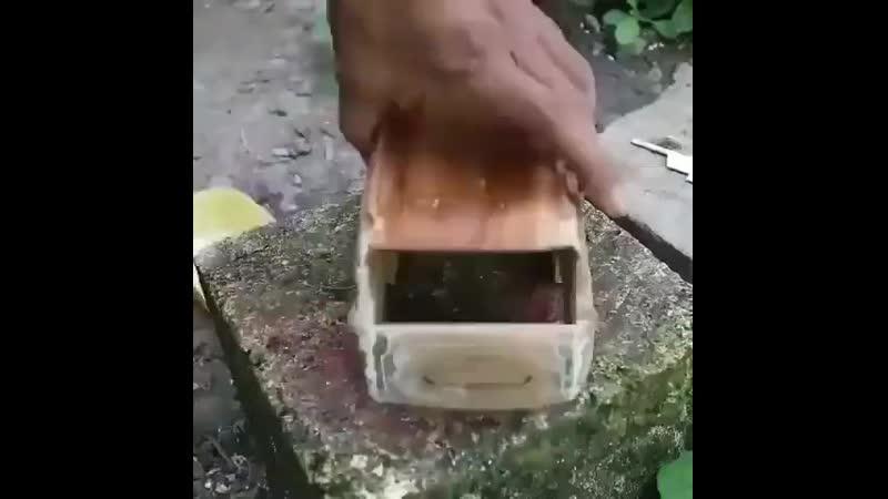 Модель авто из дерева vjltkm fdnj bp lthtdf