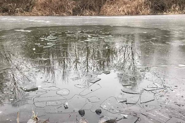 Рыбак нашел лед, провалился и замерз В водоеме под Гомелем 19 января нашли тело мужчины: судя по всему, он рубил лунку топором, провалился и не смог выбраться. Удочка так и плавала в полынье,