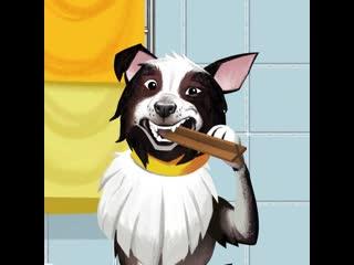 PEDIGREE DENTASTIX  собакам тоже нужно чистить зубы каждый день