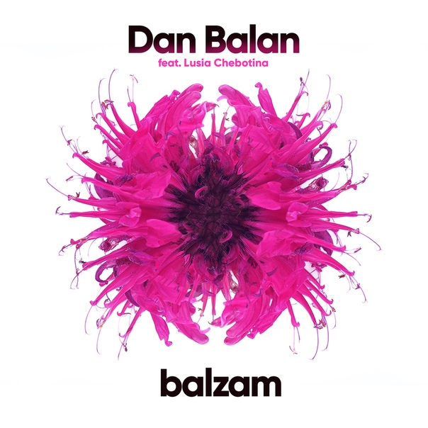 Dan Balan, экс-солист группы «O-Zone»