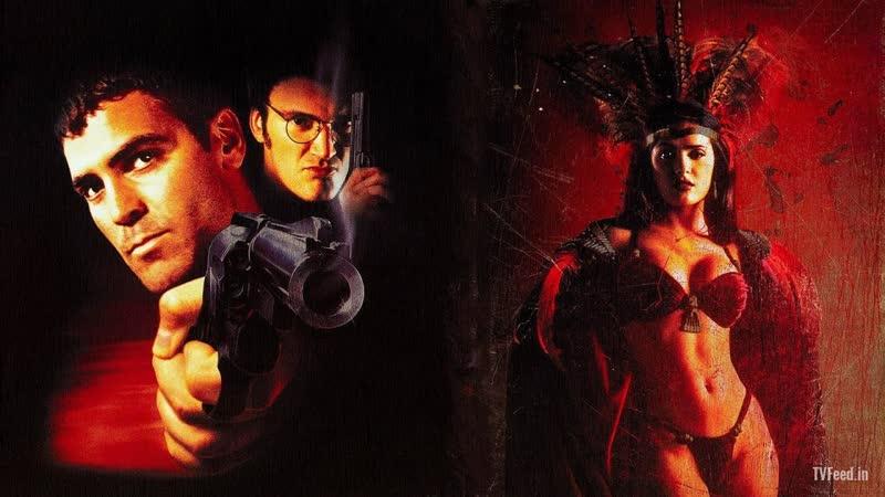 Смотрим От заката до рассвета 1995 Movie Live