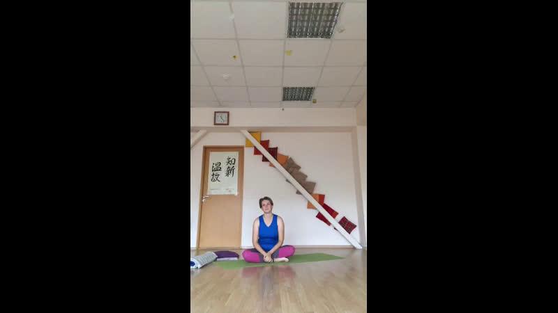 Мастер-классы йога для лёгкости, здоровая спина, динамическая практика