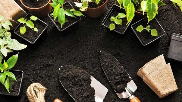 Тепличные грунты Грунт для огородной теплицы может быть сильной положительной составляющей ее продуктивности. Это один из плюсов мелких теплиц по сравнению с крупными. Последнее преимущество