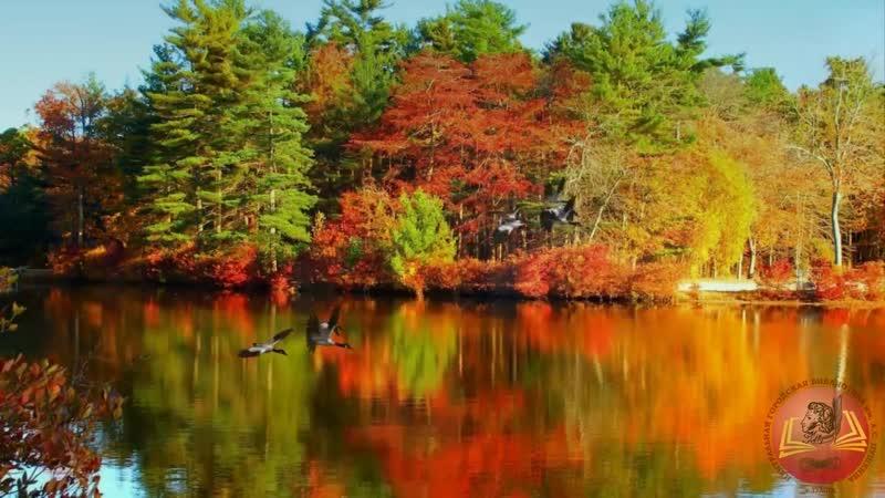 Осень рыжая подружка поэзия молодым