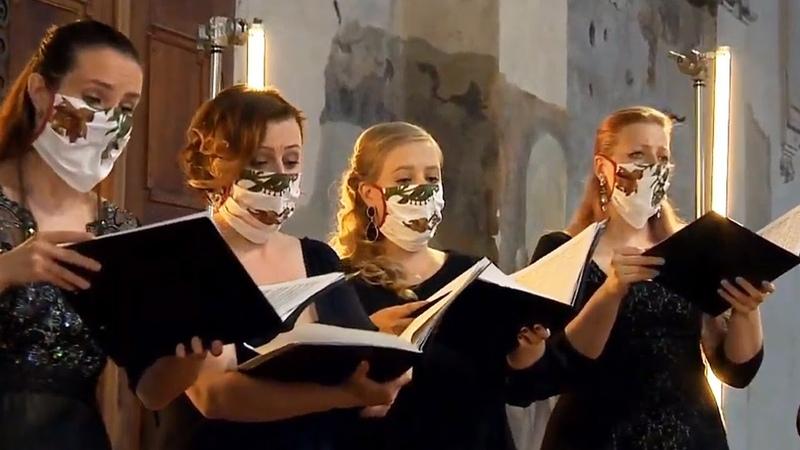 Motet: Komm Jesu komm BWV 229 Collegium 1704