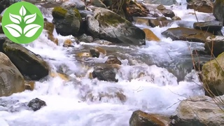 Mountain river, cascade of waterfalls. White noise (sound of nature) for falling asleep. 10 hours