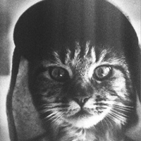 Личная фотография Андрея Петровича