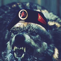 Фото профиля Дмитрия Соколова