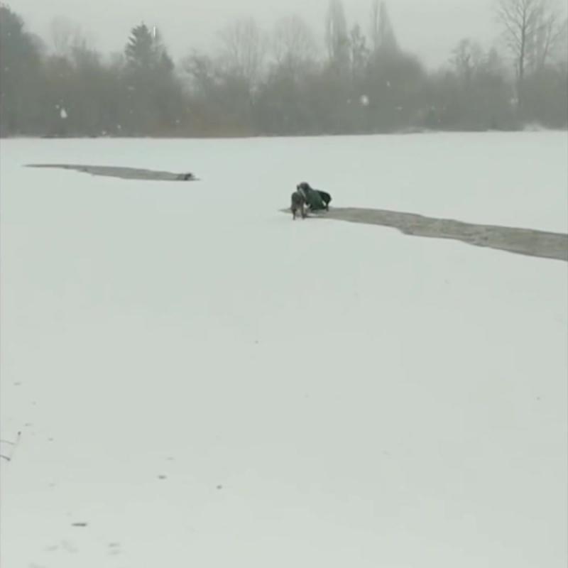 Спасение собаки в Канаде