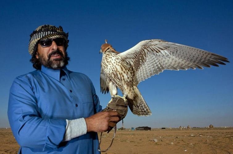 Страна без туристов или каково это жить в Саудовской Аравии, изображение №7