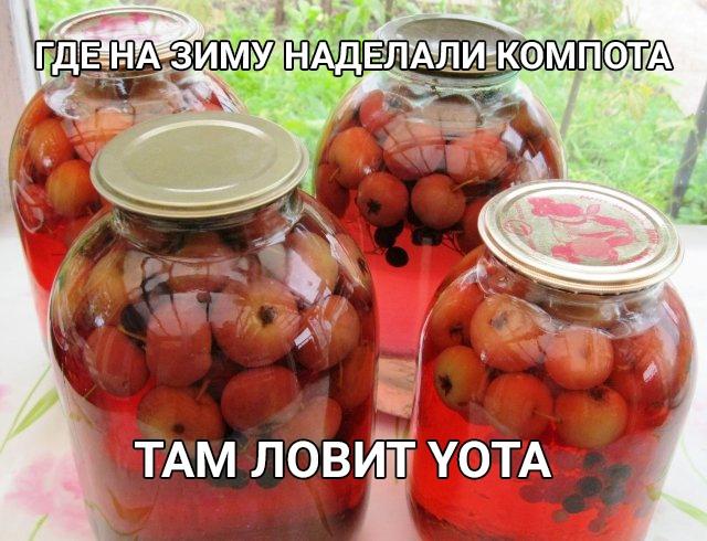 А у вас ловит YOTA?