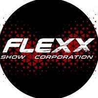 Логотип Школа танцев и вокала в Новосибирске FLEXX