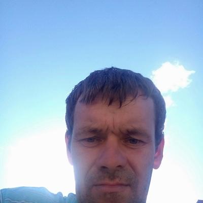 Сергей, 36, Kargopol'