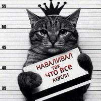 Фотография анкеты Димы Иванова ВКонтакте
