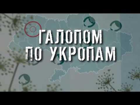 ГТРК ЛНР Галопом по укропам 13 40 31 марта 2020