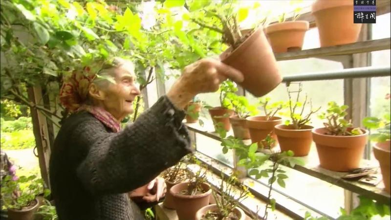 20120920 千羽千尋 塔莎老太太的生活態度 4