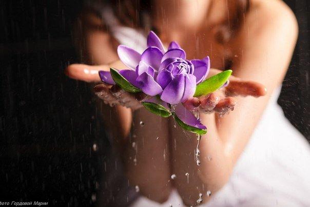 Душа не идет в одном лишь направлении и не растет как тростник