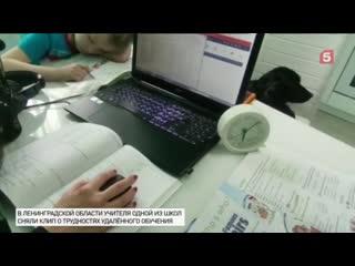 ВЛенинградской области школьные учителя сняли клип