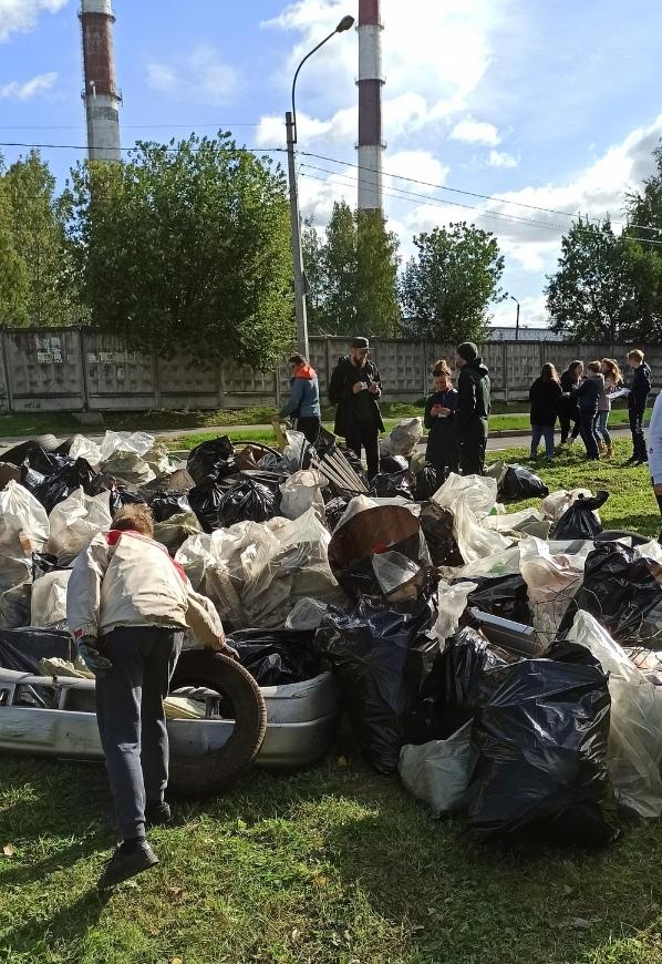 """Участники """"Чистых Игр"""" собрали в Поповском Лесу Курска 7,5 тонн мусора"""