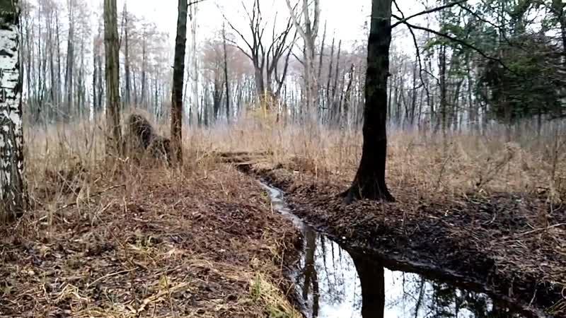 Домик Бабы Яги на Вампирском ручье ВЕСНА