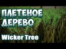 🌿🔥 ПЛЕТЕНОЕ ДЕРЕВО ➤ WICKER TREE ⭐️МК от ВИТАЛИЯ ЛАРИНА ➤ ПЛЕТЕНИЕ ИЗ ЛОЗЫ WICKERWORK