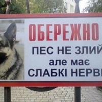 Виталик Усенко