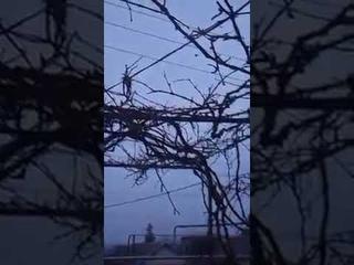 Трудовские под страшной атакой ВСУ, Марьинка и Старомихайловка содрогаются 2